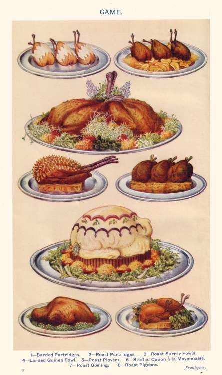 Victorian Era Food   Colour Food Plate of Poultry and Game a