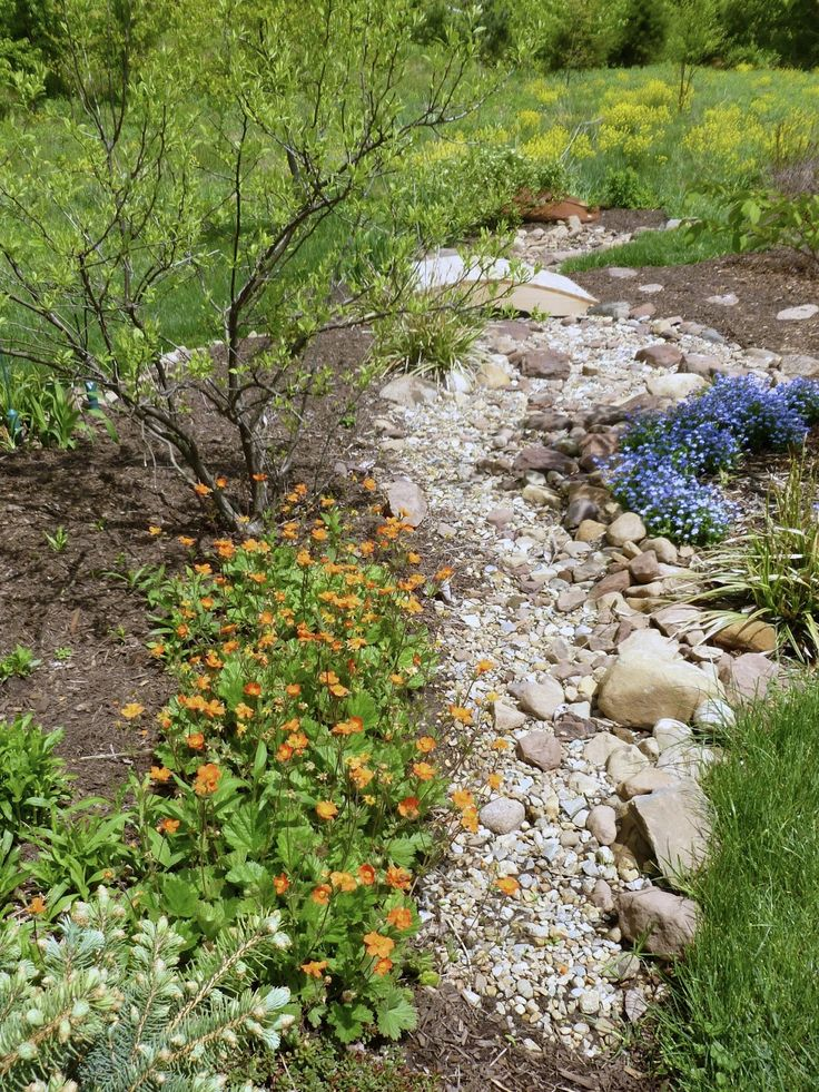 97 best images about dry creek bed french drain on pinterest for Dry landscape design