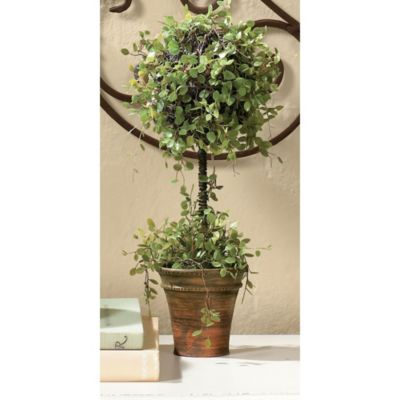 Angel Vine Topiary  Now $14.99 - $35.00  Go faux for everlasting color without the maintenance of the real thing. Lacy green leaves add softness to classic topiary cone shapes. Planted in weathered terra cotta pots with realistic soil.: Ideas, Ballard S, Vines, Ballard Designs Com, Decor Pillows, Topiaries, Ballard Designs Pin, Vine Topiary, Angel Vine