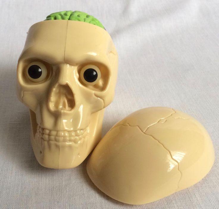 Plastic Human Skull Model w/ Removable Skull Cap Brain Eyeballs K&I Int  #KI