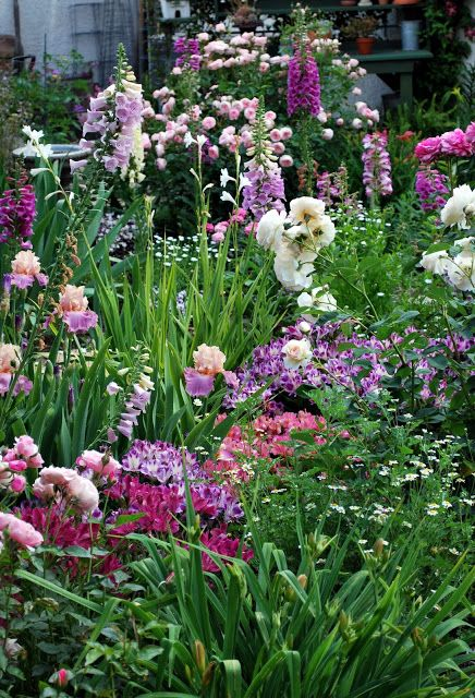 Iris 'Sweet Musette' with foxglove, roses, and alstroemeria. Pinks and purples.