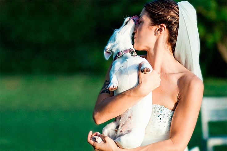 The bride and the love for her dog - Foto dell'amore della sposa per il suo cane