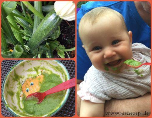Zucchinibrei für Babys