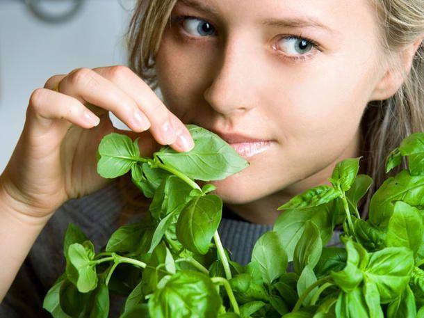 Abnehmen mit Basilikum: Mit diesem Schlank-Trick verlierst du zwei Kilo pro Woche
