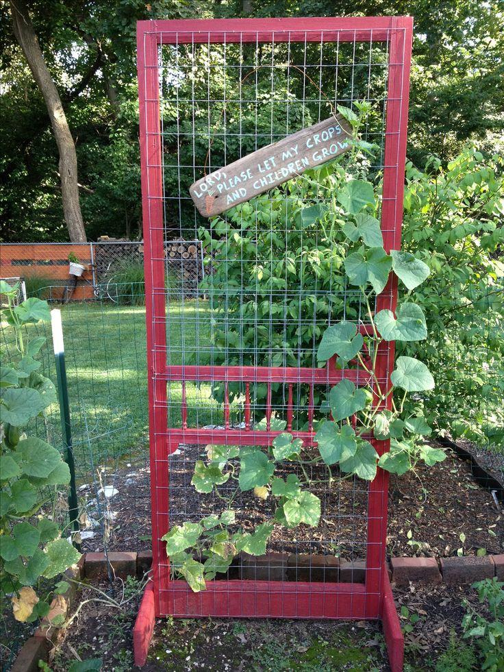 Garden Trellis Ideas sq ft garden trellis Makes A Great Trellis For My Garden