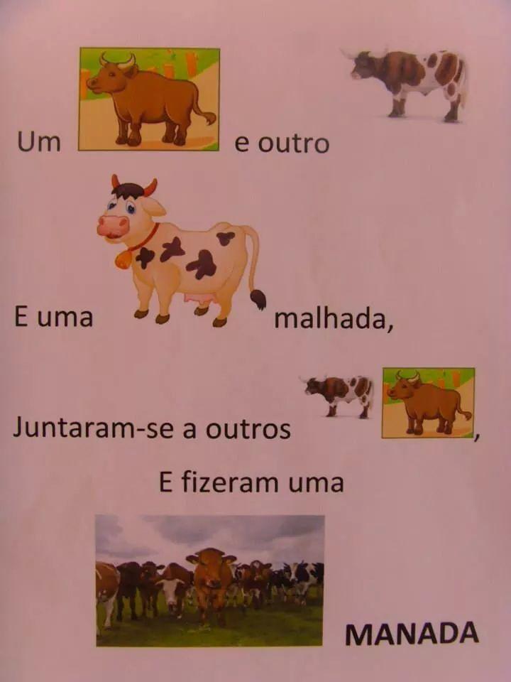 Vaca                                                                                                                                                                                 Mais