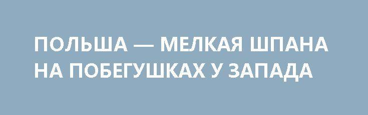 ПОЛЬША — МЕЛКАЯ ШПАНА НА ПОБЕГУШКАХ У ЗАПАДА http://rusdozor.ru/2017/07/05/polsha-melkaya-shpana-na-pobegushkax-u-zapada/  Ровно год назад, 4 июля 2016 года, Польша временно приостановила режим малого приграничного передвижения (МПП) с Калининградской областью. Спустя пару месяцев стало понятно, что нечто временное в очередной раз стало постоянным.  Несколько предыдущих лет между приграничными районами Польши и ...
