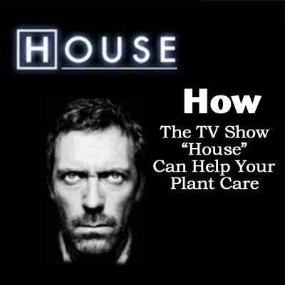 best 20+ tv show house ideas on pinterest | floor show, american