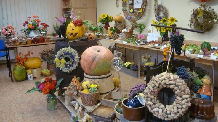 Podzimní výstava 2013  - Výstavu pořádají zahrádkáři Vinoř - Bohdanečkská od 12. do 14. září v informačním centru Na Rychtě (Chaltická 539 Vinoř)  ( DIY, Hobby, Crafts, Homemade, Handmade, Creative, Ideas)