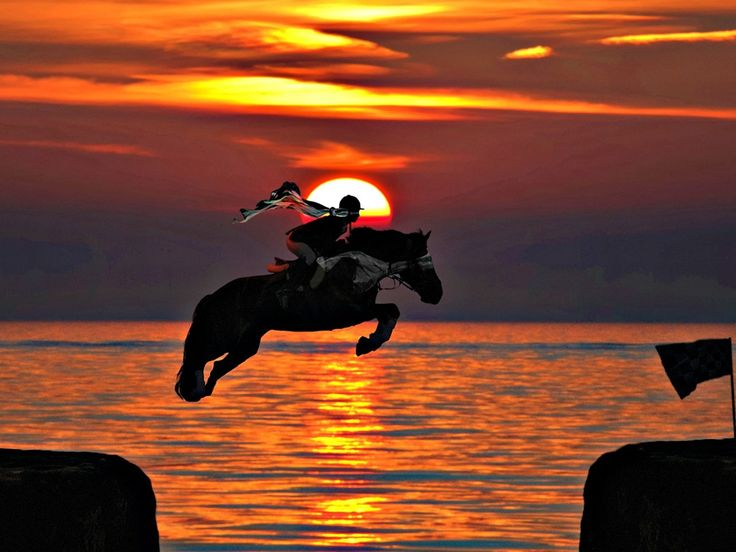 Horse Jumping Sunset