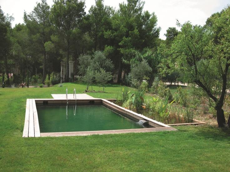 17 meilleures images propos de piscines swimming for Piscine biologique