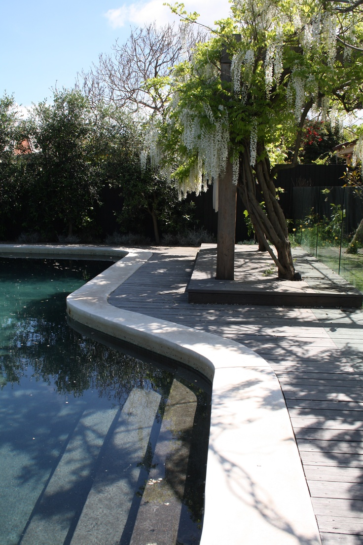 swimming pool melbourne  greghatton.com