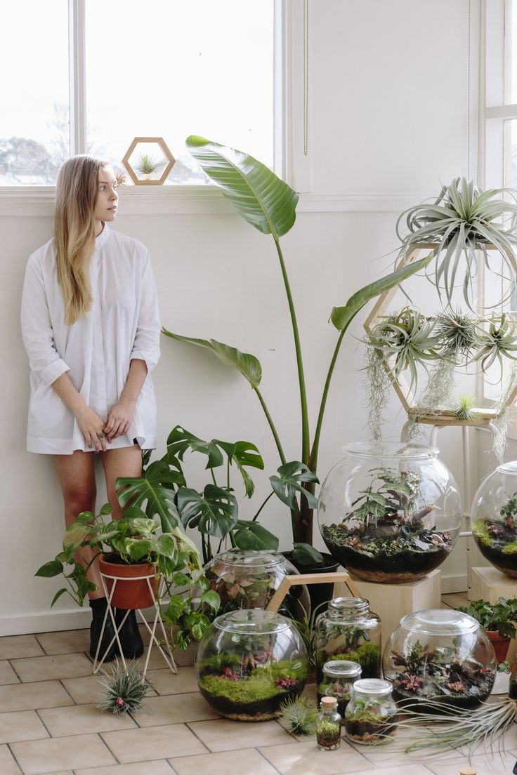 Plant Decoration In Living Room: 1000+ Ideas About Indoor Plant Decor On Pinterest