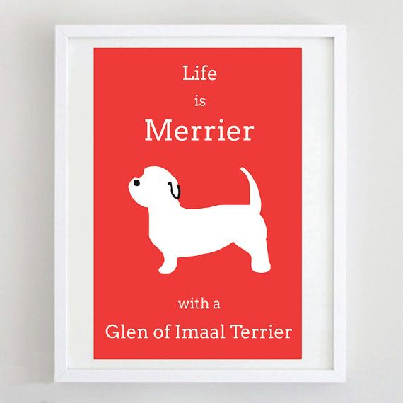 Glen of Imaal Terrier Print Dog Art Dog Picture by ForeverFoxed