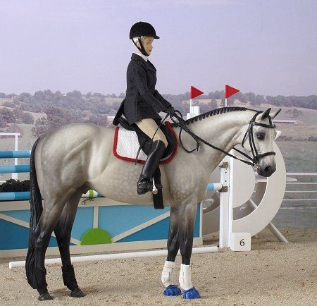 Ever After and Lace in the Show Jumping ring and came in 1st so they will move on to Junior Olympics