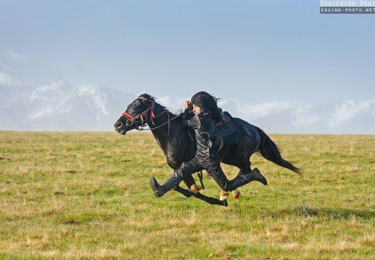 Caucasus horses | Equine photography by Ekaterina Druz