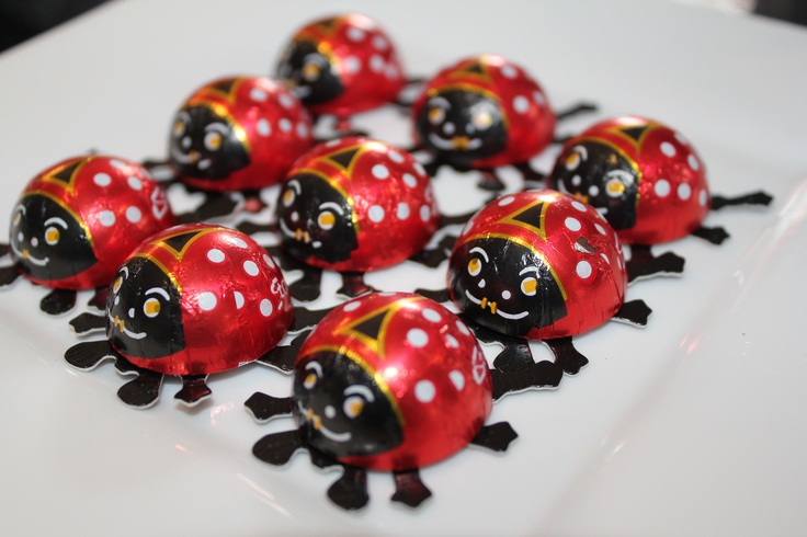 Lady beetle chocolates