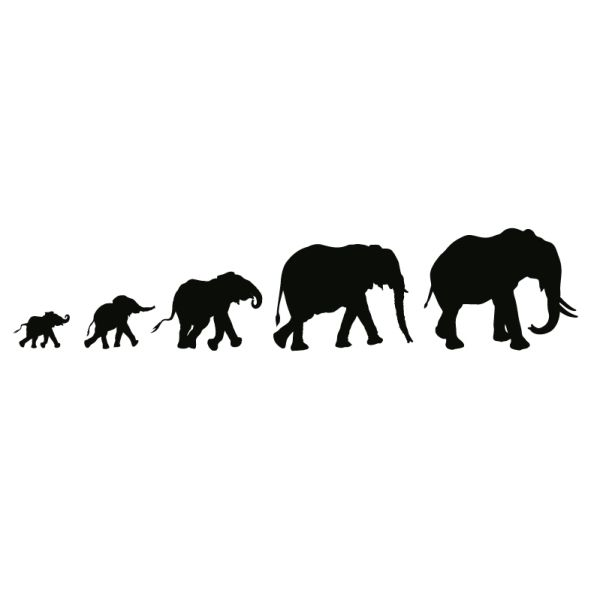 elephant parade wall tattoo #silhouette #animal #digistamp