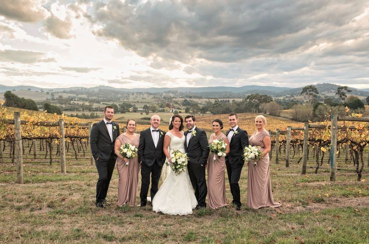 Bridal party photos in the vines ~ Touch of Flash wedding photography ~