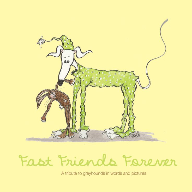 Fast Friends Forever: A tribute to greyhounds in words and pictures. This delightful full colour book captures the personality of rescued greyhounds and their own owners through poetical discourse and through pictures. This book is being sold by Mr. John Irvine as part of a fundraiser for the Greyhounds as Pets in New Zealand.
