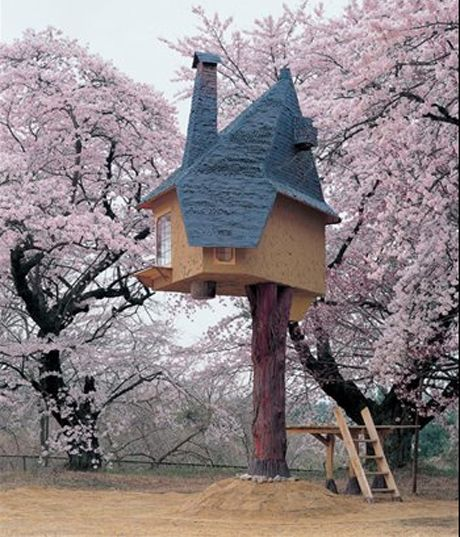 Terunobu Fujimori's teetering tea houses | Architecture | Agenda | Phaidon