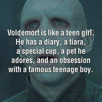 Just picture Voldy sitting in a dimly lit room, scribbling in his diary about Harry Potter whilst wearing his tiara, sipping from his special cup, and petting Nagini... Yeah... that's awesome.