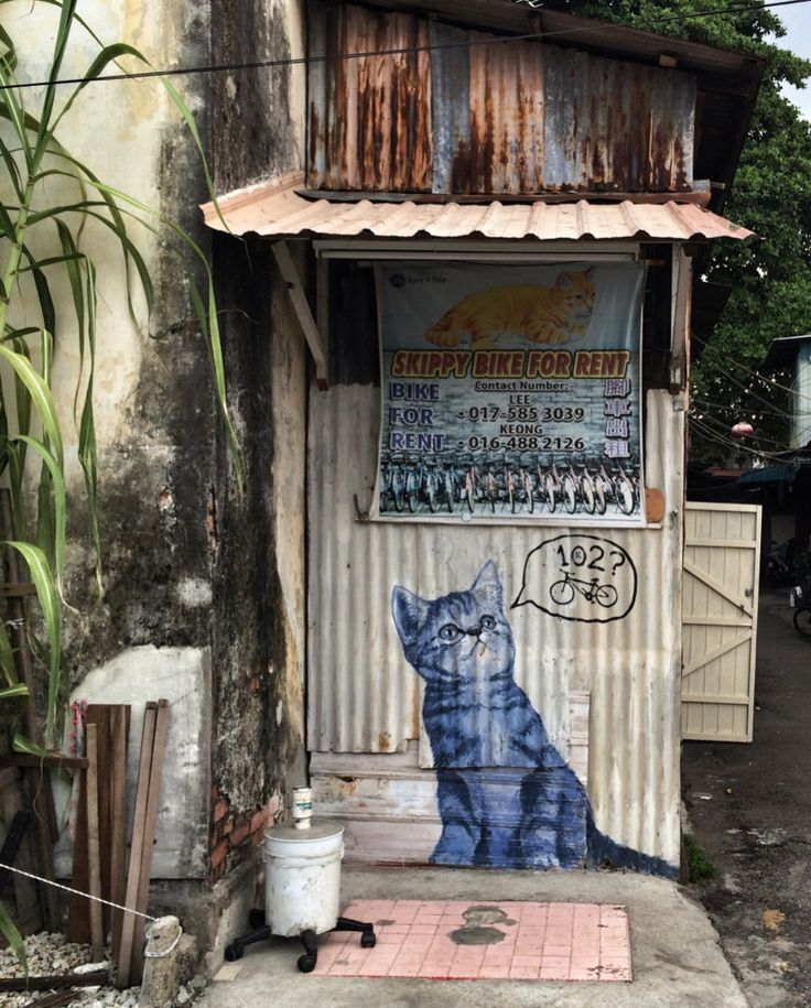 Malaysians love cat art in the street art capital of the world: georgetown, Penang. backpacking, tavel, southeast asia