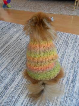 Koiran neulepusero