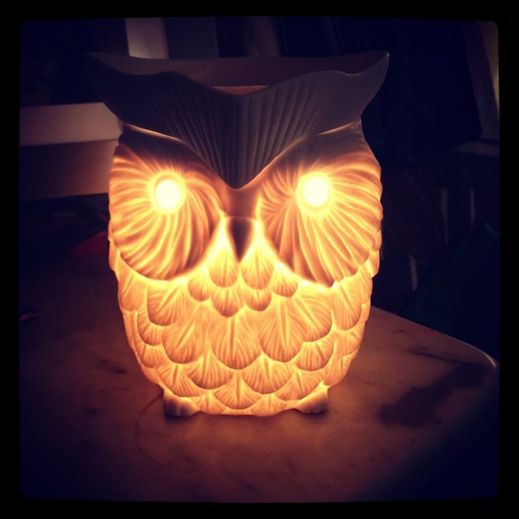 whoot-scentsy-warmer