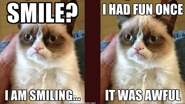 GRUMPY Cat, the cranky-faced Kitty responsible for thousands of memes is headed for the big screen.