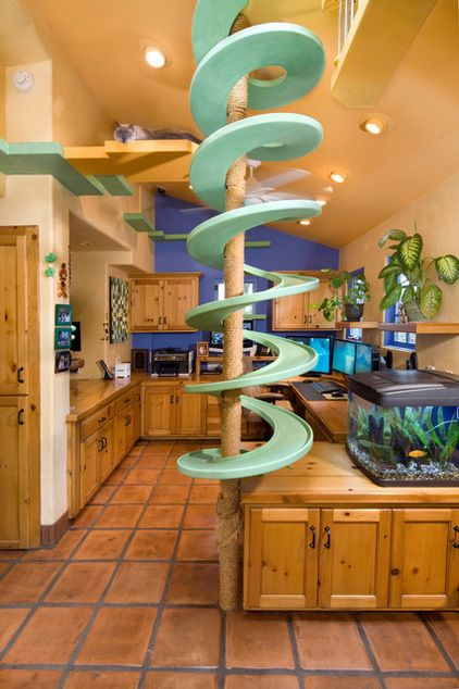 "In Cohen's home office (shown here), a spiral walkway wraps around a floor-to-ceiling scratching post. His cats, all mutts, climb up the pole and walk down the spiral. ""I thought maybe the cats would just look at it, but they use it all,"" he says. ""It's like a freeway sometimes with them all over the place."""