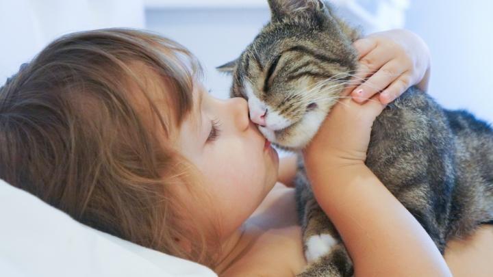Mort de l'animal de compagnie: 3 idées pour apaiser le chagrin de son enfant
