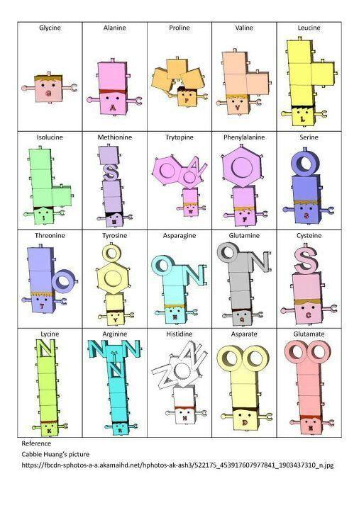 Best Biochemistry Images On   Biochemistry Acetyl