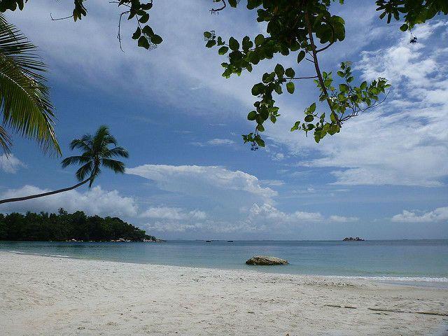 Explore The Beauty Of Caribbean: 25+ Best Ideas About Bintan Island On Pinterest