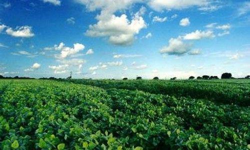 Agroecología, administrar sistemas agrícolas conservando los recursos naturales http://www.biodisol.com/cambio-climatico/agroecologia-administrar-sistemas-agricolas-conservando-los-recursos-naturales/