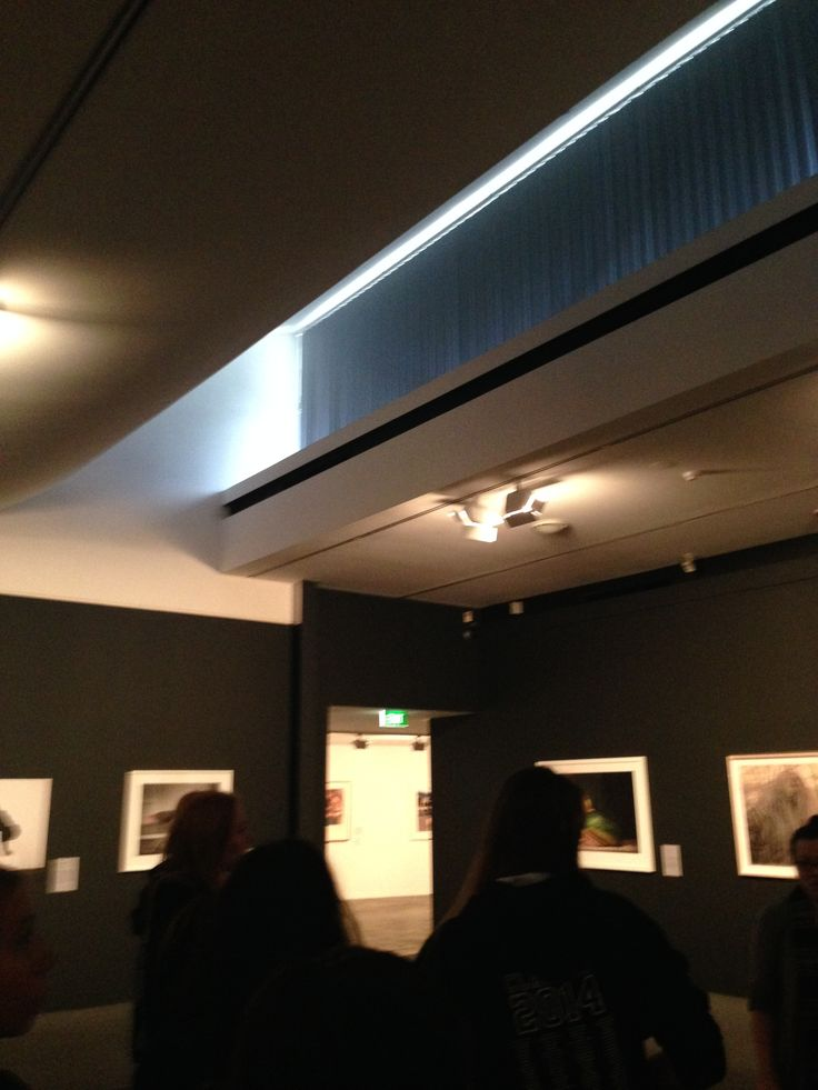 Bowness Prize Exhibition MGA 2014 Deduction of natural lighting