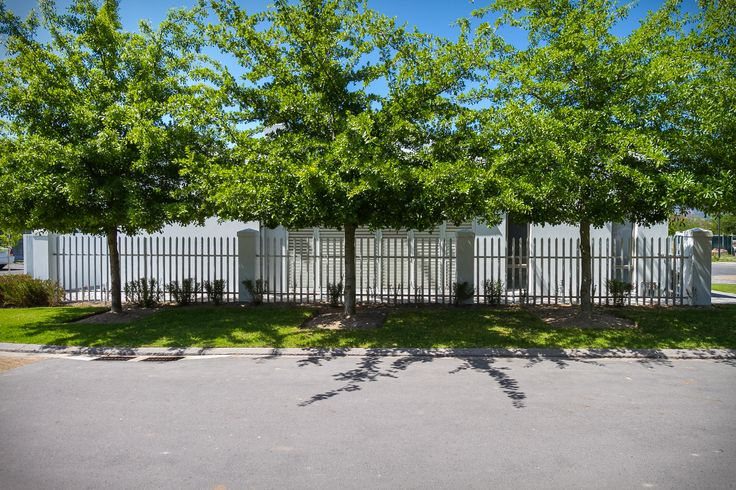 Trees providing shade for this Paarl home.