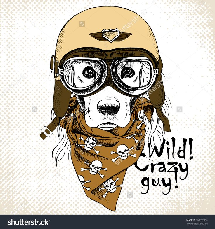 The Poster With The Portrait Of The Dog Wearing The Motorcycle Helmet And The Neckerchief With The Images A Skull. Vector Illustration. - 320512358 : Shutterstock