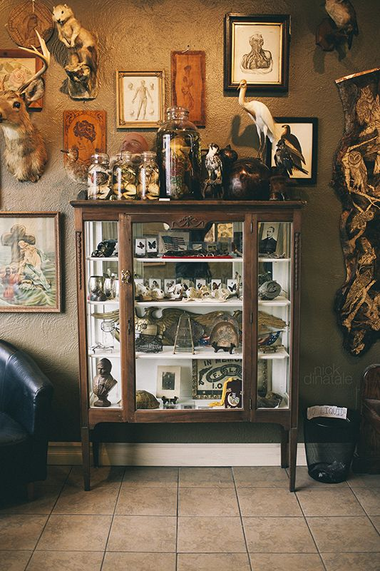 The curiosity cabinet at Iron Works Tattoo in Portsmouth, NH. Taken by me. http://www.flickr.com/photos/nickdinatale/8391153318/in/photostream