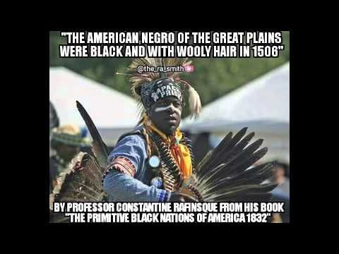 Blacks are the Indigenous AmeRican