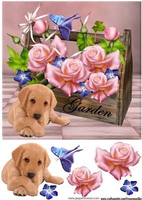 Roses for You on Craftsuprint designed by Marijke Kok - Lovely design with gorgeous pink roses and a cute puppy, for any occasion - Now available for download!