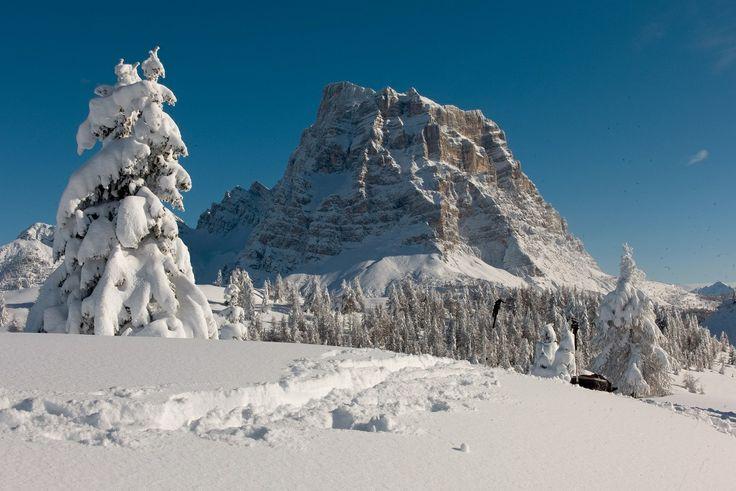 Monte Pelmo 3.168 m - Civetta Ski Area #dolomitistars