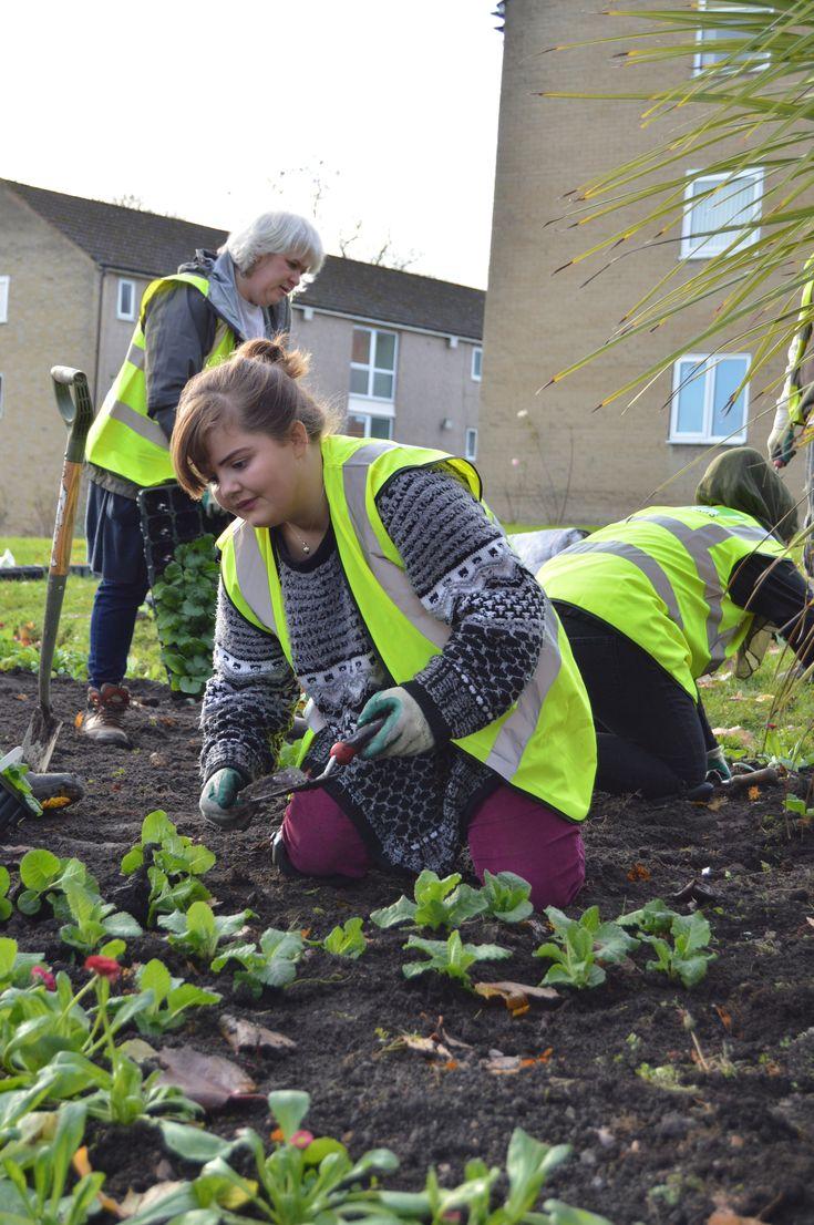 Bradford Works planting flowerbeds in Shipley