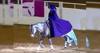 Elle entre dans l'arène avec son magnifique cheval : quand elle retire sa cape, on est bouche-bée!