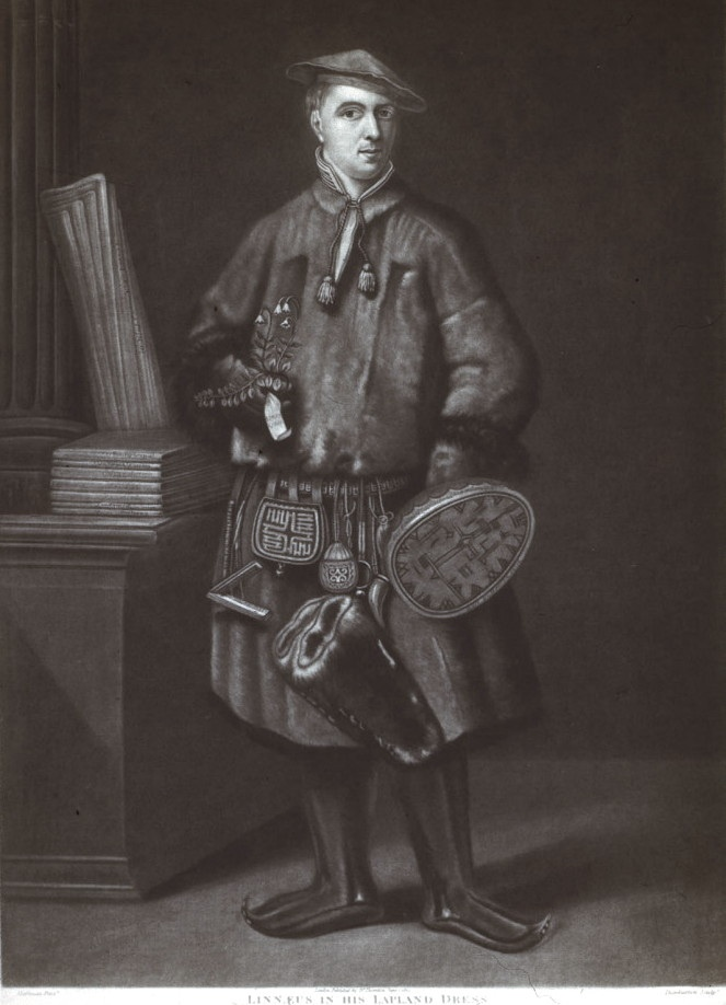 """""""linnaeus in his lappland dress"""" 