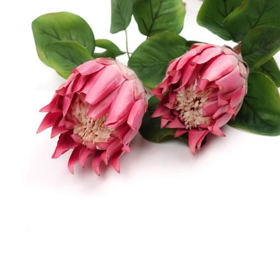 Big Size Protea Stem In Pink 67cmh Australian Native Artificial Flowers Home Party Decor Diy Flower Arranging In 2020 Artificial Flowers Flower Arrangements Diy Australian Native Flowers