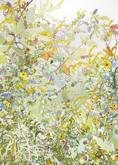 Joan Becker Watercolor - summer 2010