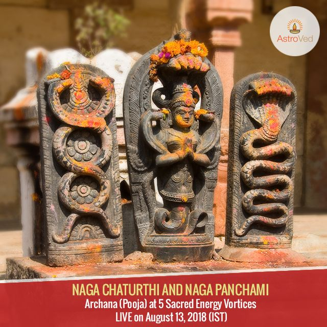 Pin by Astroved on Naga Panchami | Happy married life