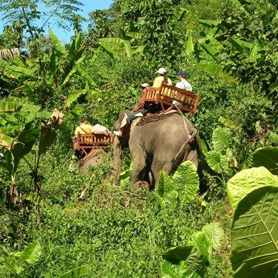 2 Days: Trekking, Kayaking and Elephant Riding in Laos