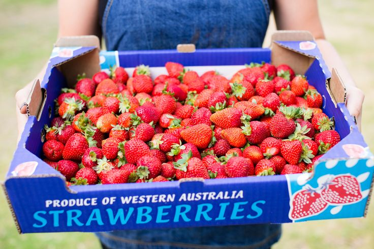 Local strawberries, Albany Western Australia